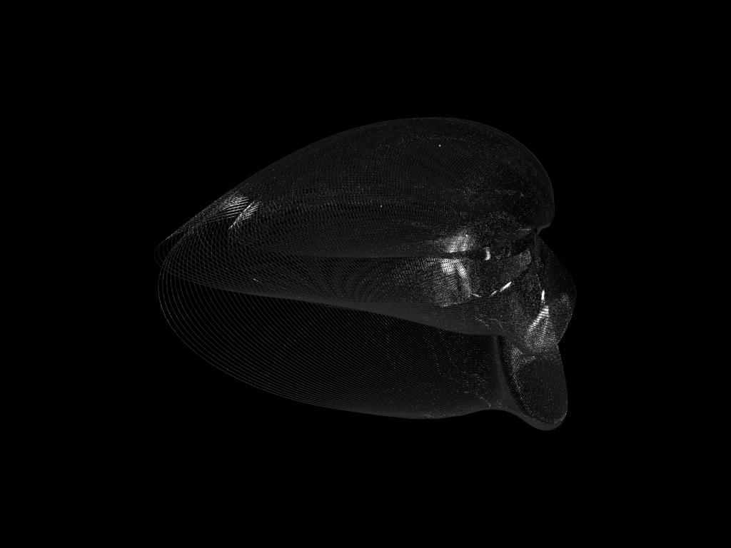 Formahaut Γ - HR 8799 - Olivier Pasquet _2015