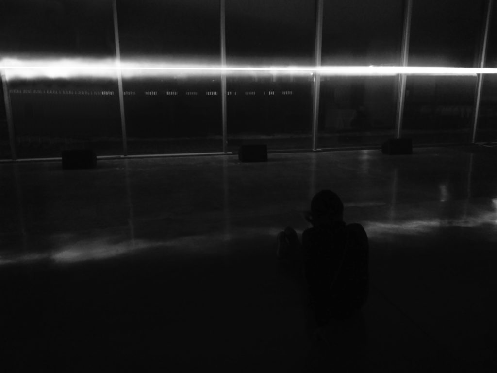 Frank Lloyd Wright Martin house's Greatbatch Pavilion, Toshiko Mori, 2009 - Loyd's Mirror – Olivier Pasquet _2018